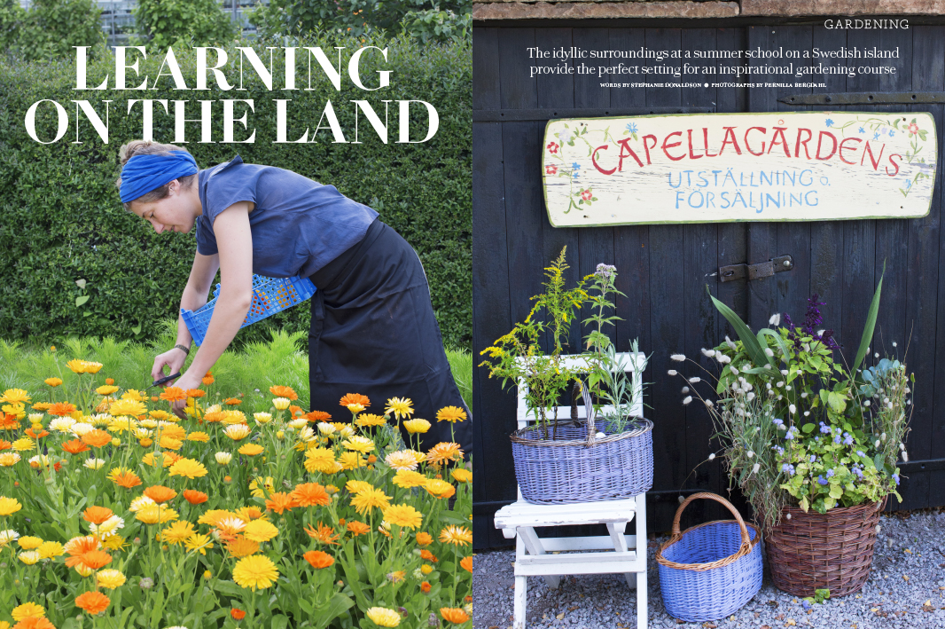 Country Living Magazine − Learning on the land