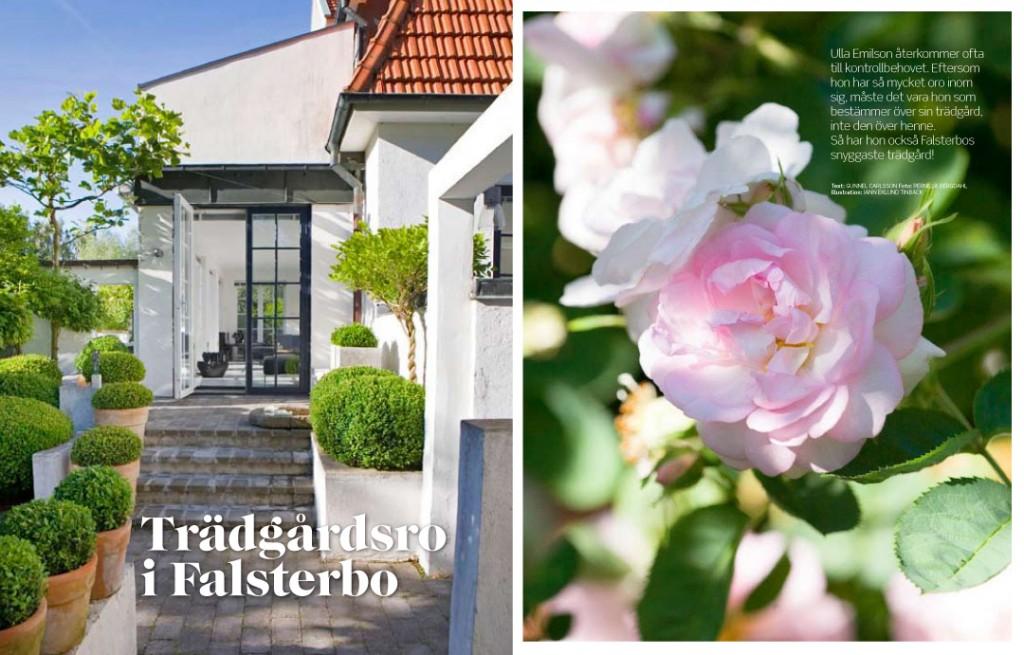 SOM_Falsterbo1