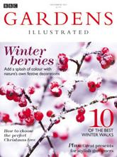 Garden_wint